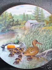 Knowles 1987 Northern Shoveler Duck Jerner's Ducks Ltd Ed Plate