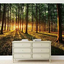 Forest wallpaper mural for bedroom & living room nature sunrice green trees