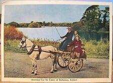 Irish Postcard Lakes of KILLARNEY JAUNTING CAR Ireland Mac Series 4x6 1960s