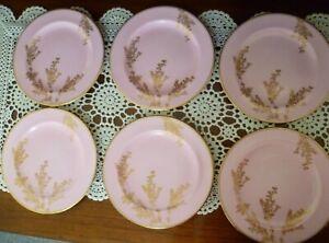 ANTIQUE Minton 1870s ? PINK & GOLD TRIM 6 x side plates 17.5 cms across