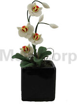 Dollhouse decorate 1:12 Scale Miniature white Butterfly orchid and flower pot