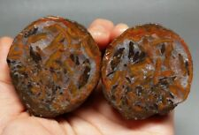 A Pair Rough(Unpolished) Agate/Achat Nodule Specimen Xuanhua Hebei China  XH-057