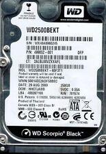 WESTERN DIGITAL 250GB WD2500BEKT-60F3T1 DCM: HHCTJABB