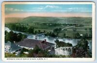1910's RORICK'S GLEN ELMIRA NEW YORK BIRDSEYE VIEW AMUSEMENT PARK ROLLER COASTER