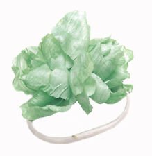 Flower Power - Gorgeous Green Rose Embellished White Chord Hair Band(Zx213)