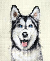 HUSKY DOG ~ Full counted cross stitch kit - with all materials