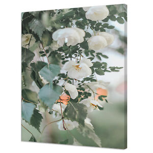 BEAUTIFUL WHITE BLOSSOM FLOWERS MODERN DESIGN CANVAS PRINT WALL ART PICTURE