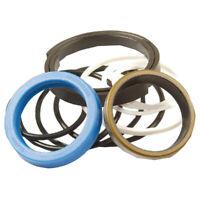 1607915M92 Stabilizer Cylinder Seal Kit Fits Massey Ferguson 50H