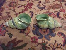 Un paio di più brevi e figlio Shell Posie vasi