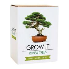Gift Republic Grow Your Own Bonsai Trees Plant Mixed Seeds Home Growing Kit