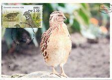 ISRAEL 2015 FAUNA BIRDS COTURNIX COTURNIX LABELS MACHINE # 1 LABEL MAXIMUM CARD