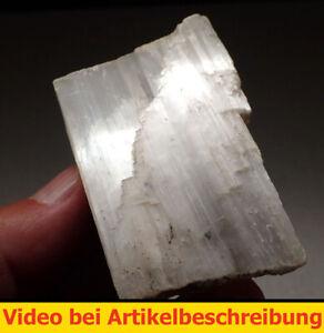 8113 Fasergips ca 5*8*2 cm Friedrichroda Thüringen MOVIE