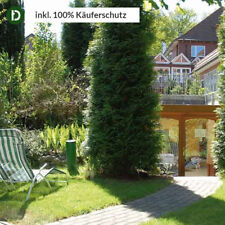 3 Tg./ 2 P 3*S GreenLine Hotel Holst Rosengarten Nähe Hamburg Altes Land