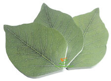 Stationary Leaf Shape Sticky Notes Like post its, 150 Sheets 3 Pack