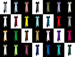"2""x120"" SATIN Fancy Dress Party Wedding Ribbon SASH Band Belt Bow Bridesmaid"