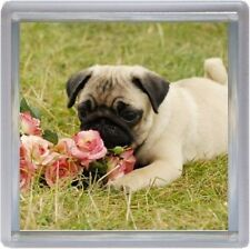 Pug Coaster Design No 8 by Starprint