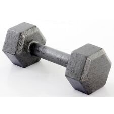 35 lb. Dumbbell Free Weight Hex Dum Bell Cast Iron Metal Workout Gym Hexagonal