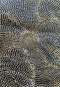 aboriginal art Joy Petyarre