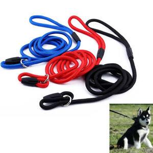 Pet Dog Cat Nylon Rope Training Leash Slip Lead Strap Adjustable Traction Collar