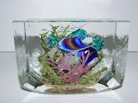 Steven Lunberg Studio Art Glass Lampwork Fish Aquarium Paperweight/Sculpture 906