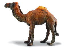 *NEW* CollectA 88208 Dromedary Camel Model
