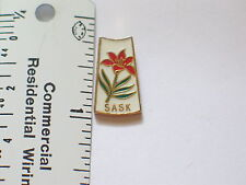 Sask Canadian Skiing Pin (Ski#848)