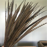 wholesale 5-500pcs beautiful natural pheasant tail feathers 20-80cm/8-32inches
