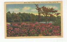 Vintage Linen Used Postcard Azalea Gardens Showing Rustic Bridge, Norfolk, VA