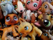 Littlest Pet Shop LPS Lot of 3 RANDOM SURPRISE Blemished Dogs 100% Authentic
