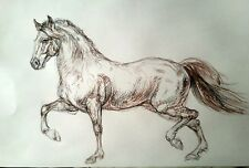 Original pastel pencil conte drawing on paper, Appaloosa Horse running,equestria