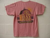 Delta Gamma Fraternity Hay Ride 2012 Comfort Colors Pocket Tee Salmon Pink Small