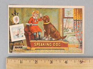 RARE Antique Trade Card Shepard Hardware Iron Speaking Dog Mechanica Bank, NR