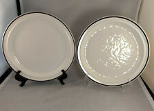"Set of 2 Royal Doulton Ting 10 1/4"" Dinner Plates"
