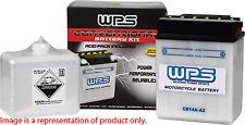 Wps Conventional 12V Standard Battery with Acid Pack 12N7D-3B(Fits: Badger 80)
