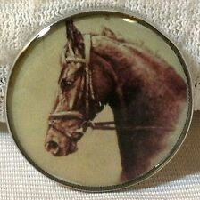 Fine Art Horse Snap Young Race Horse In Bridle 18-20Mm Some With Bubbles! gift!