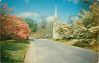 Postcard Dogwood Time, Greenfield Hill, Fairfield, CT, Posted 1956