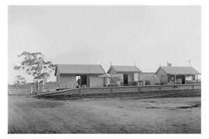 NARRE WARREN Railway Station Victoria c1900 modern Digital Photo Postcard
