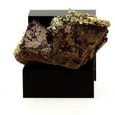 Siderite, Pyrite, Quartz. 703.7 ct. Mésage Mine, Vizille, France. Rare