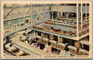MANAVISTA, Florida Postcard ATWOOD GRAPEFRUIT CO. Packing House Factory Linen