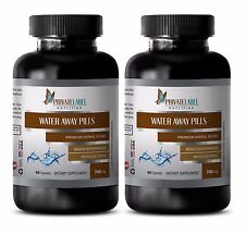 Water Pill Herbal Weight Loss Healthy Urinary Tract Bladder Kidneys (2 B) SE