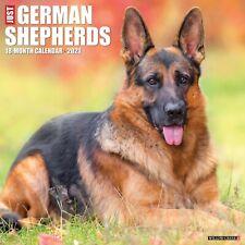 Just German Shepherds (dog breed cal) 2021 Wall Calendar (Free Shipping)