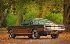 Ford Mustang fastback 1965 low reserve