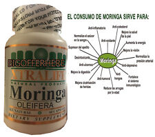 60 capsules MORINGA OLEIFERA LEAF powder 1000 MG -PHIL-  FREE SHIP (B)