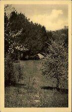 HOISDORF b. Trittau ~1950 Altersheim Lichtensee Partie im Garten Park Baum Bäume