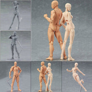 Drawing Figures For Artists Action Figure Model Human Mannequin Man /Woman model
