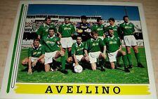 FIGURINA CALCIATORI PANINI 1994/95 AVELLINO 580 ALBUM 1995