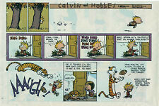 Calvin and Hobbes by Bill Watterson - color Sunday comic page - October 17, 1993