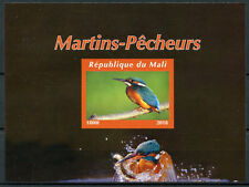 More details for mali 2018 mnh kingfishers kingfisher 1v impf m/s ii bird birds stamps