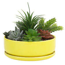 MyGift 8 Inch Yellow Ceramic Round Succulent Planter Pot with Removable Saucer