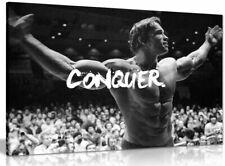 More details for motivational inspiritional arnold schwarzenegger conquer canvas  picture print